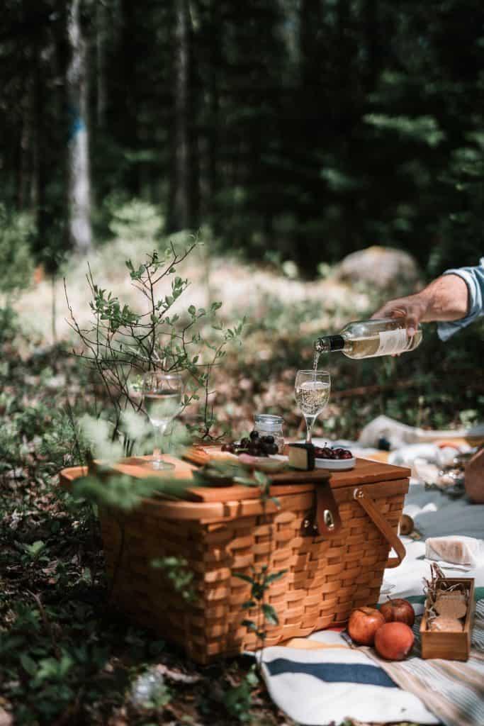 father's day quarantine picnic